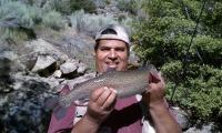 Monster Trout