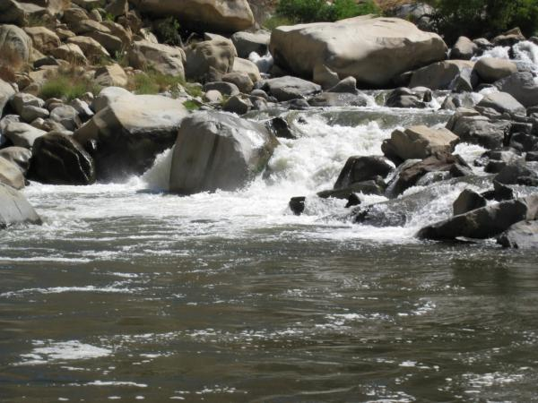 Kern river kern fishing for Kern river fishing report