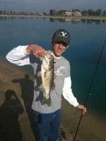 bass on senko worms